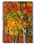 New England Sugar Maples Spiral Notebook