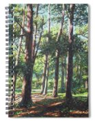 New Forest Trees With Shadows Spiral Notebook