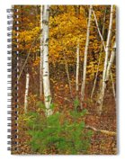 New Growth Old Leaves Spiral Notebook
