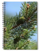 New Growth Pinecone At Chicago Botanical Gardens Spiral Notebook