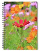 New Jersey Wildflowers Spiral Notebook
