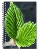 New Leaves Spiral Notebook