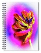 New Life Spiral Notebook