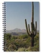 New Mexican Desert Spiral Notebook