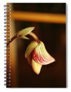 New Orchid Spiral Notebook
