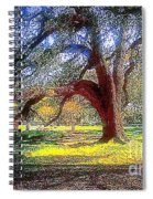 New Orleans Sunday In The Park With George Spiral Notebook