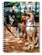New York City Dog Walking Spiral Notebook