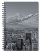 New York Skyline - View On Central Park - 2 Spiral Notebook