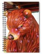 New York State Chinese Lantern Festival 6 Spiral Notebook