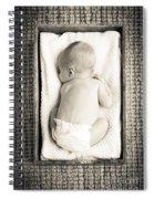 Newborn Baby In Crate Filtered Spiral Notebook