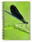 Beautiful Demoiselle Damselfly Spiral Notebook