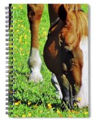 Nibbling On Flowers Spiral Notebook