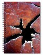 Niche Spiral Notebook