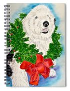 Nicholas Christmas 2013 Spiral Notebook