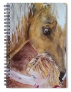 Nick And Girl Spiral Notebook