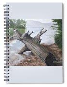 Nickajack Driftwood Spiral Notebook
