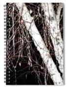 Night Branches Spiral Notebook