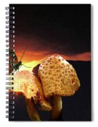 Night Fall Spiral Notebook