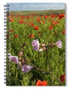 Night Flowering Catchfly And Poppies Spiral Notebook