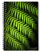 Night Forest Frond Spiral Notebook