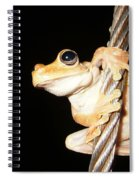 Night Frog Spiral Notebook