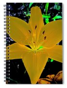 Night Glow Lily Spiral Notebook