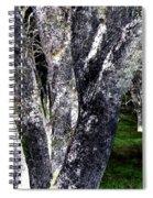 Night Grove Spiral Notebook