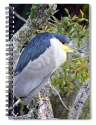 Night Heron Spiral Notebook