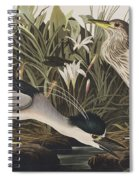 Night Heron Or Qua Bird Spiral Notebook