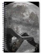 Night Hope V4 Spiral Notebook