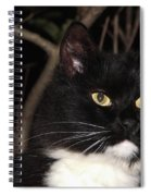 Night Hunter Spiral Notebook