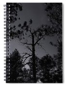Night In The Druid Cathedral Spiral Notebook