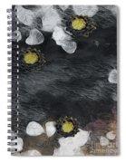 Night Lotus Spiral Notebook