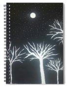 Night Of Lights Spiral Notebook