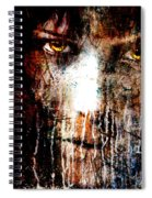 Night Eyes Spiral Notebook