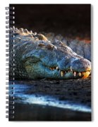 Nile Crocodile On Riverbank-1 Spiral Notebook