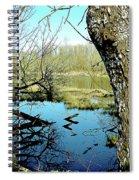 Nisqually Pond Spiral Notebook