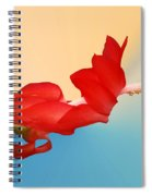 No Fear Of Flying Spiral Notebook