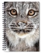 No Mouse This Time Spiral Notebook
