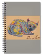 No Name Cat Spiral Notebook