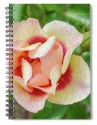 No Regrets Spiral Notebook
