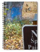No Spray Painting Spiral Notebook