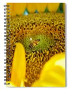 No Time To Waste Spiral Notebook