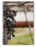 No Wine Spiral Notebook
