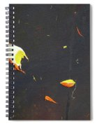 Nocturn In Black And Gold Spiral Notebook