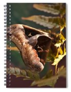 Nocturnal Moth Spiral Notebook