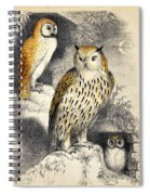 Nocturnal Scene With Three Owls Spiral Notebook