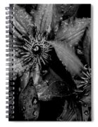 Noire Et Gris Spiral Notebook