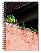 Nola Security2 Spiral Notebook