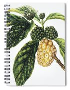 Noni Fruit Spiral Notebook